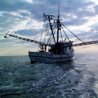 Sustainable management and resilience of U.S. fisheries in a changing climate: a collaboration between OAR and NMFS