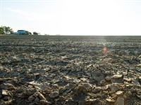 Significant groundwater loss in California's Central Valley during recent droughts