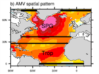 Climate impacts of Atlantic Multidecadal Variability