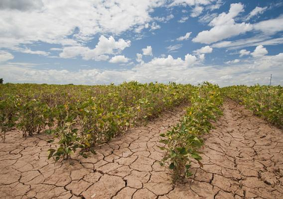 Digging Deeper Into Flash Droughts