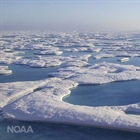 CPO's Ben DeAngelo to lead U.S. delegation for Arctic Monitoring and Assessment Program meeting