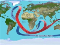 Large ocean currents system likely to critically impact climate response to greenhouse gases on centennial timescale