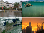 NOAA's Climate Program Office launches Climate Risk Areas Initiative