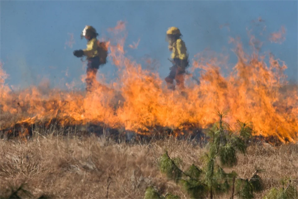 Study Finds Increasing Widespread Western U.S. Fire Danger and Fire Suppression Resource Strain