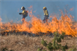 Study Finds Increasing Widespread Western U.S. Fire Danger and Fire Suppression...