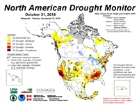 2016 North American Drought, Wildfire and Climate Services Forum: Meeting Report