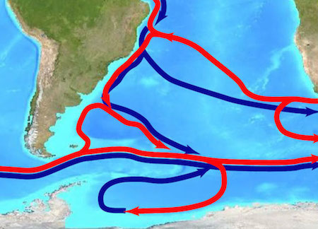 Schematic of the MOC in the Atlantic Ocean with red indicating surface flows and blue indicating deep flows. Figure adapted from Perez et al. (2015)