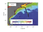 Contribution of sea surface carbon pool to organic matter enrichment in sea spray aerosol