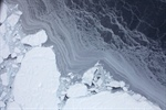 Sea ice loss predicted to slow in the Atlantic, says new CVP-funded research